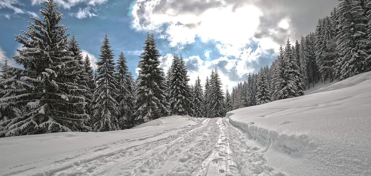 Wochenbrunn Schnee Weg im Winter
